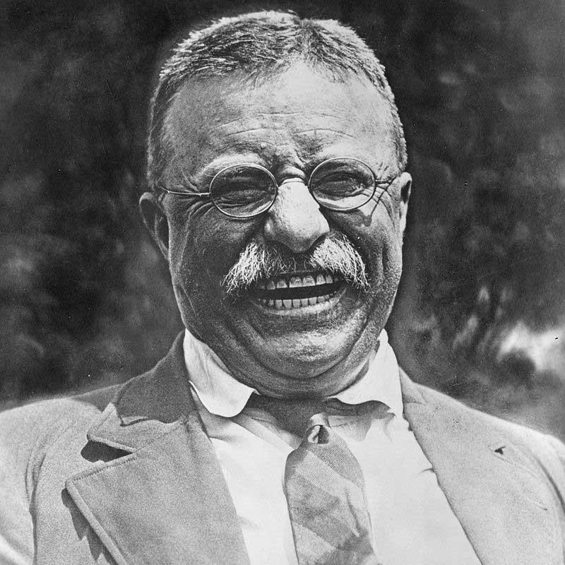 Theodore_Roosevelt_800
