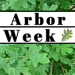 Arbor Week graphic