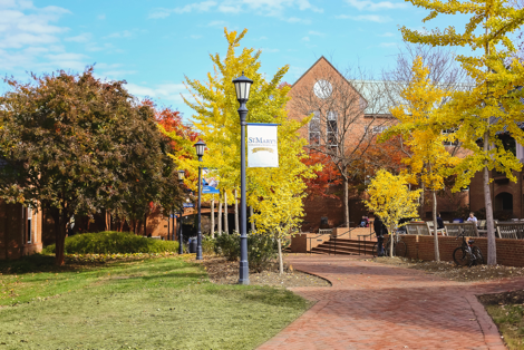 Beautiful fall foliage line brick walkways toward Campus Center