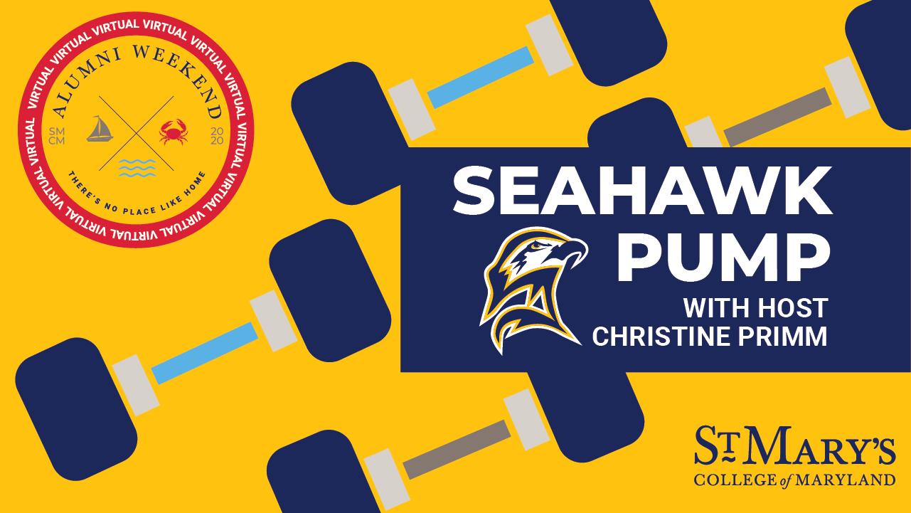 Seahawk Pump graphic illustration
