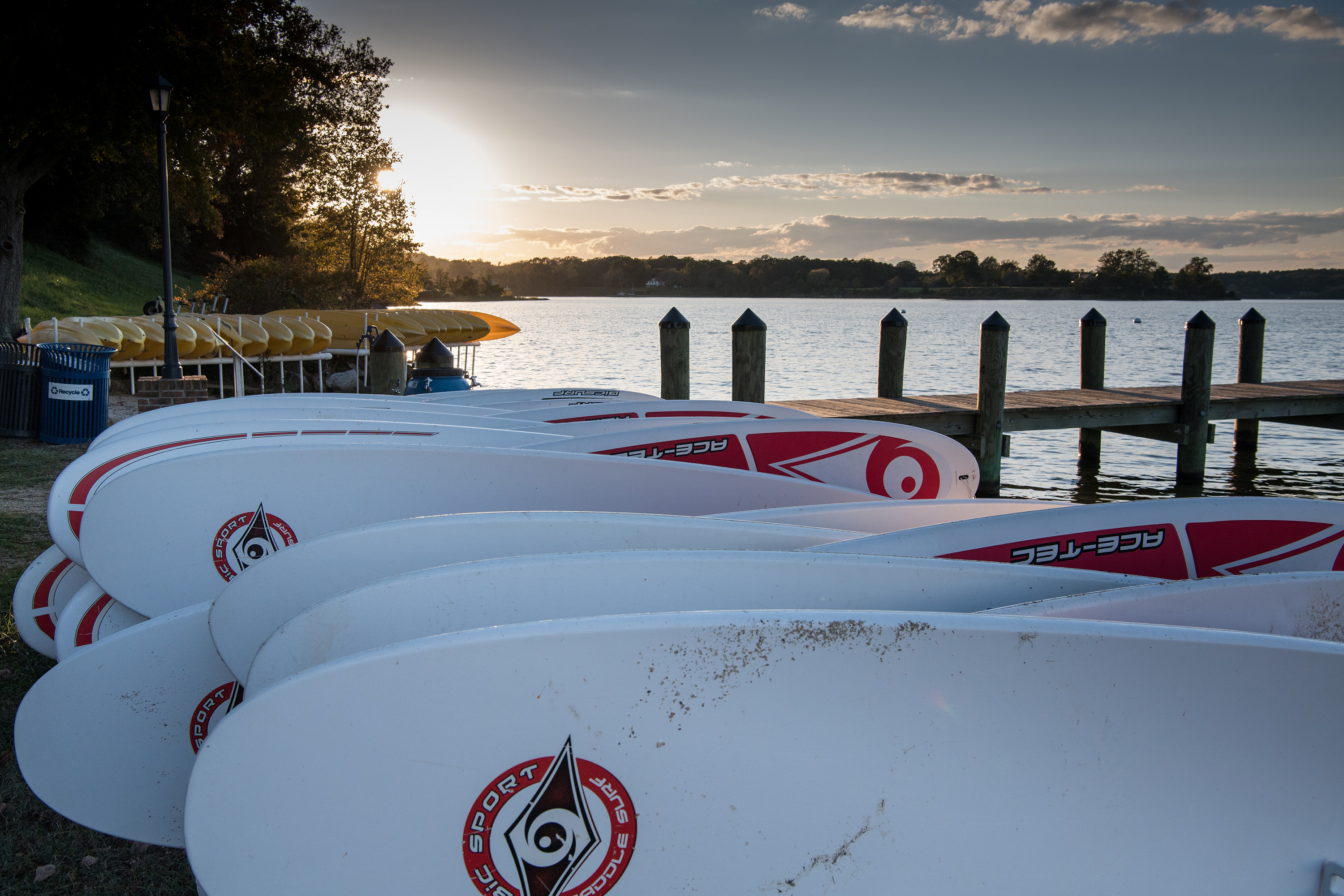 A row of white and red paddleboards and yellow kayaks are stored by a dock on the river