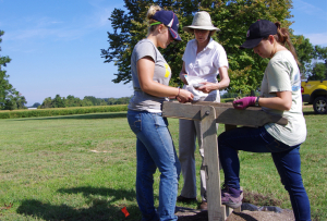 Students Rebecca Webster and Nicolette Coluzzi with Julie King, professor of Anthropology (center) at a site in Chaptico, Md.