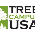 Arbor Day Foundation honors St. Mary's College with 2015 Tree Campus USA recognition
