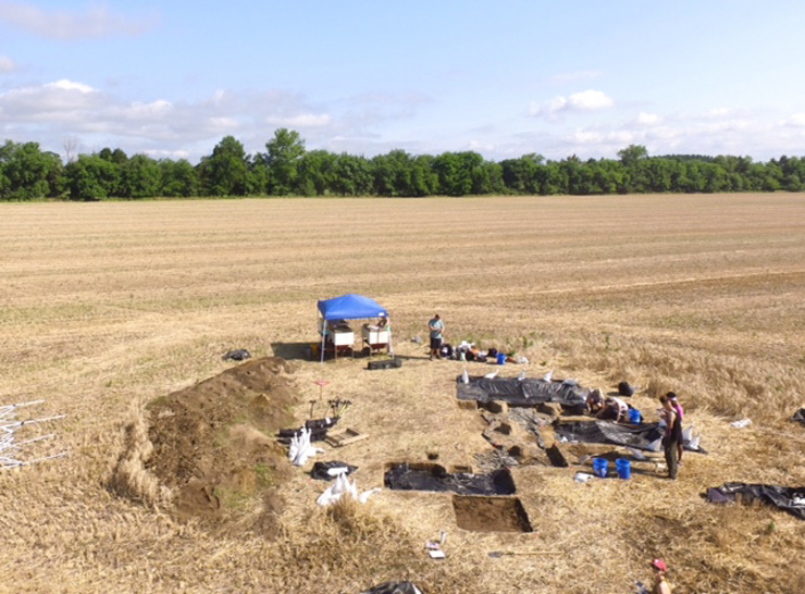 how to write a field report archaeology news