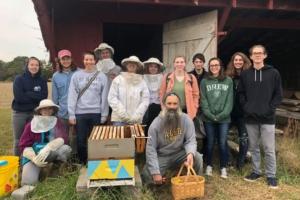 Students gathered around beehive