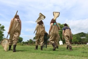 Students walking in waders to do field work