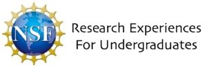 National Science Foundation Research experiences for undergraduates logo