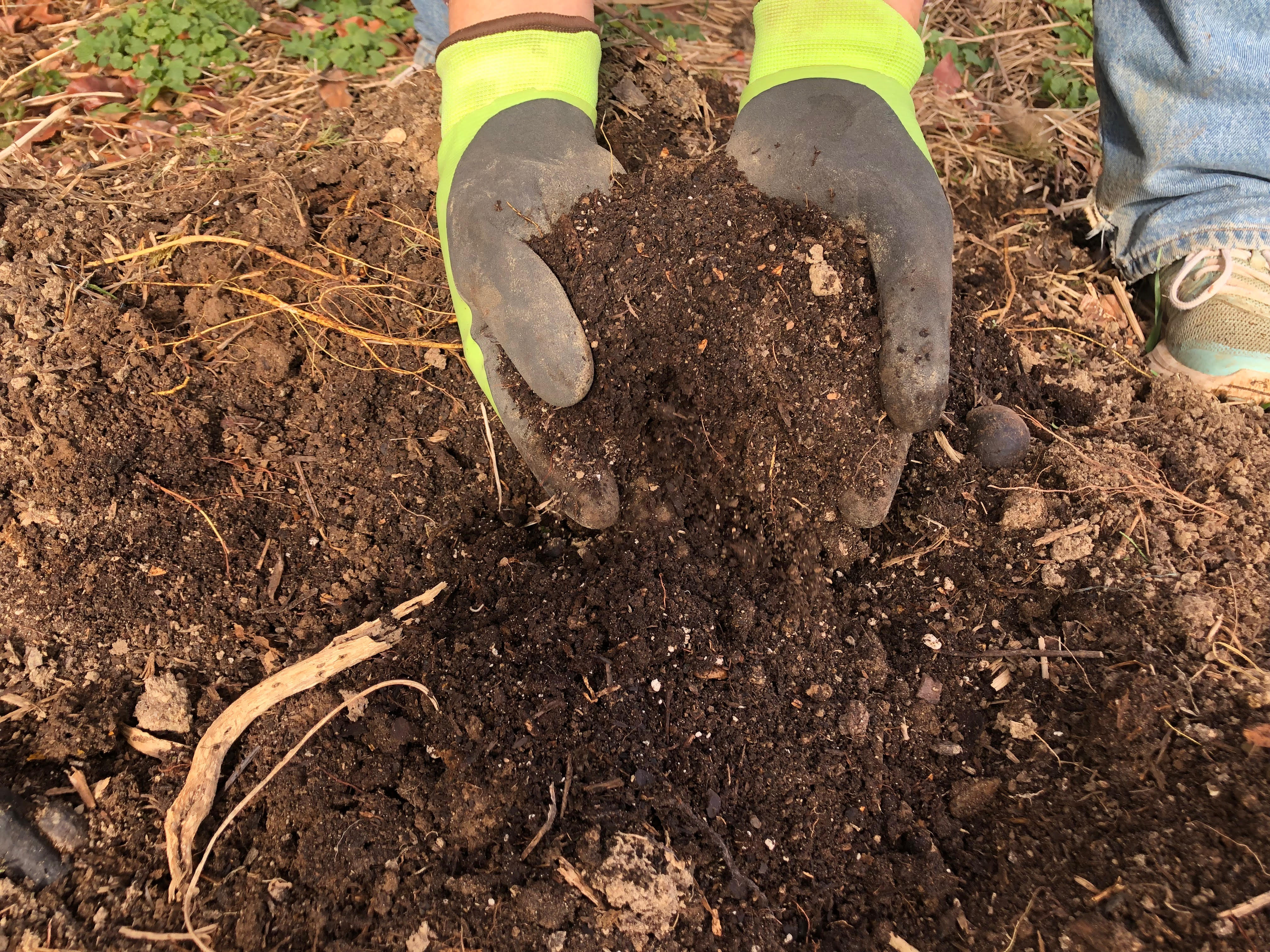 A person digging through the nutrient rich soil made by the compost